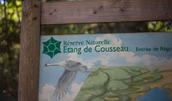 Etang-de-Cousseau-----David-Remazeilles--10--2