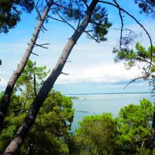 Sentier du lac Maubuisson - © Médoc Atlantique