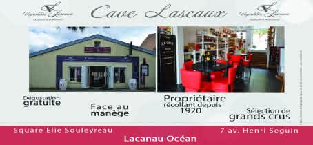cave lascaux pub vision (pour cinema lacanau) - Sylvie Lascaux