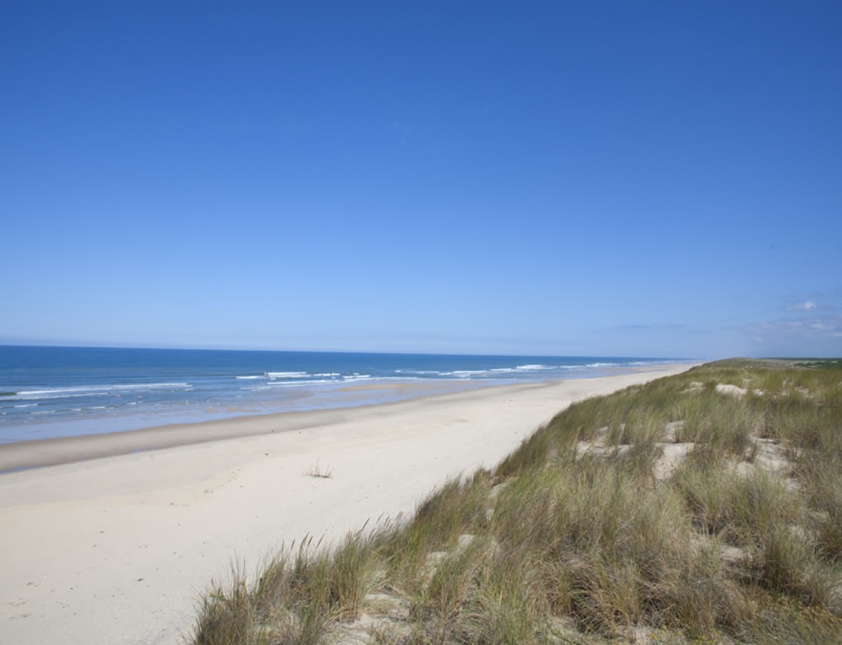 MEDOC OCEAN PLAGES OCEAN plage océane lacanau