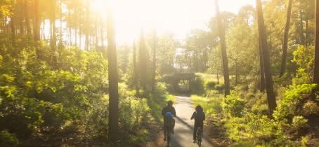 Moutchic Loisirs - Locations de vélos 4
