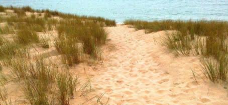 sentier dunaire Lacanau