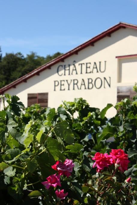 Château Peyrabon 2